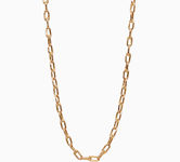 Gold jewellery Chains & Necklaces 17060554