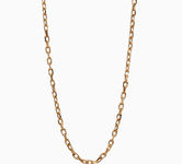 Gold jewellery Chains & Necklaces 17052757